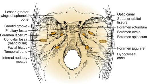surgery of the anterior and middle cranial base ento key