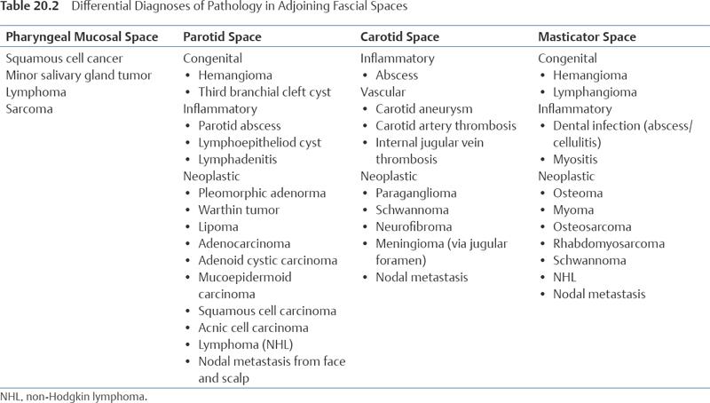 Parapharyngeal Space Tumors Ento Key